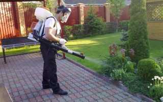 Ранцевые садовые электрические опрыскиватели — описание, принцип работы