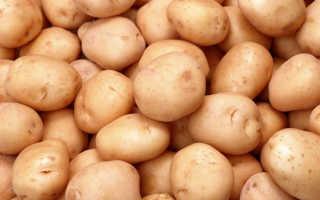 Посадка и уход за картофелем — секреты успешного выращивания растения