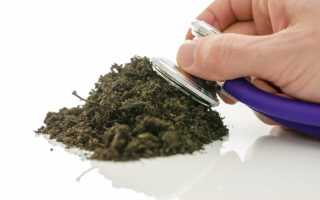 Как проверить кислотность почвы — способы ее повышения и понижения