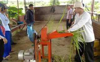 Садовый измельчитель травы: принцип работы, создание электрического устройства своими руками