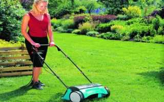 Внесение удобрений для газона осенью: виды удобрений, особенности проведения осенней подкормки травы