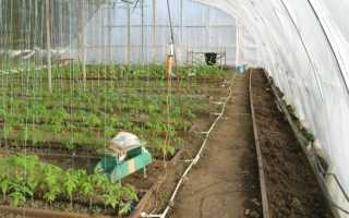 Обогрев теплицы из поликарбоната — как это происходит и что нужно знать садоводу