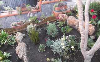Дизайн садового участка своими руками: подготовка, основные работы, фото в деревне