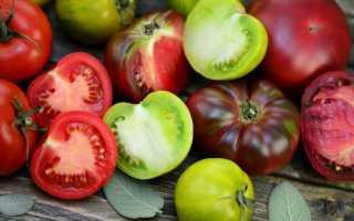 Лучшие сорта томатов для экстремальных условий — короткого лета или жары