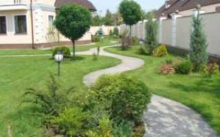 Оформление двора на участке: создание проекта, этапы, интересные варианты