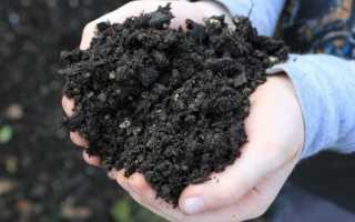 Какая почва из существующих видов самая плодородная