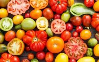 Томат Подарок феи — полное описание и урожайность сорта