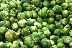 Урожай капусты при хорошем поливе