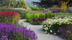 Украшение садовых дорожек с помощью цветов