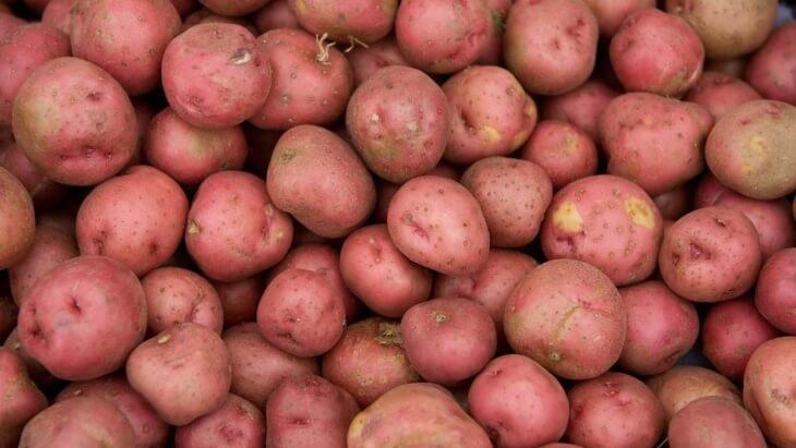 Картофель, который можно использовать для посадки