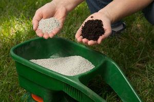 Особенности подкормки газонов азотными удобрениями