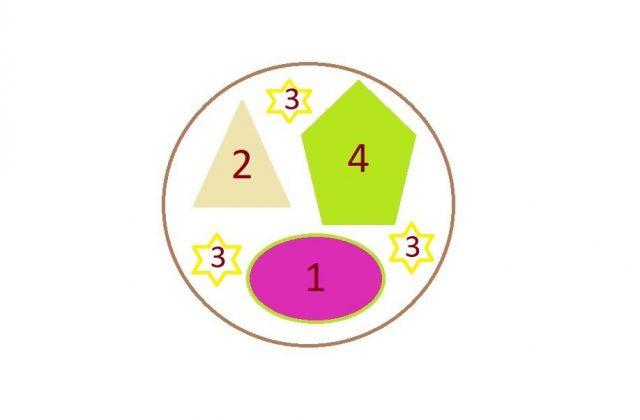 Схема композиции «Лиловый рассвет»: 1 - супертуния «Пикассо» - 1 шт., 2 - супертуния «Латте» - 1 шт.; 3 - вербейник монетчатый «Ауреа» - 2-4 шт., 4 - колеус «Фейерверк Лимон» - 1 шт.