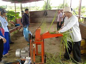 Принцип работы электрического садового измельчителя