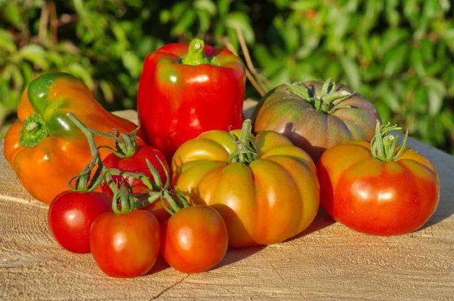 Лучшие сорта томатов и перцев для холодных регионов
