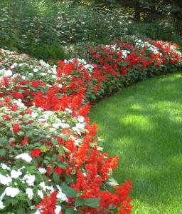 Обрамление полянки с помощью ярких цветов