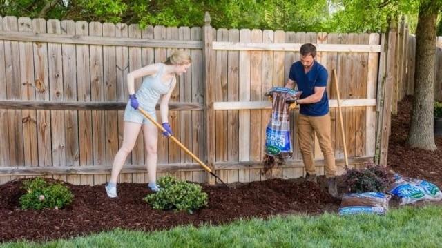 Мульчирование почвы поможет сохранит влагу возле корней растений на более длительный срок