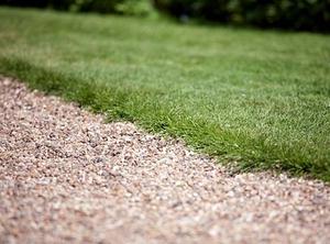 Как посадить траву на газоне