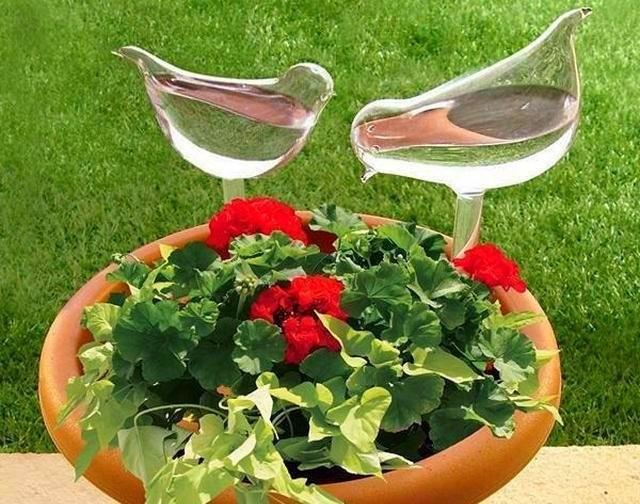 Простейшие системы автополива для комнатный растений могут иметь форму различных фигур