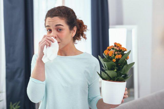 Симптомы аллергических реакций на комнатные растения могут быть разными