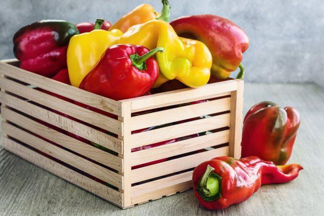 Перец в открытом грунте — мои 5 секретов большого урожая