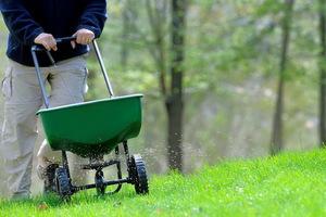 Описание способа подкормки газонов фосфорными удобрениями