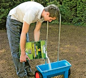 Перечень и описание правил внесения подкормки для газонов