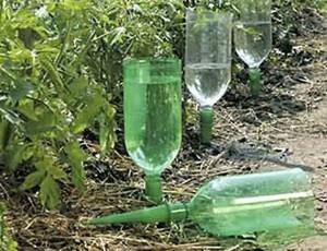 Полив капельный позволяет получить максимальное качество полива при минимальных затратах воды.