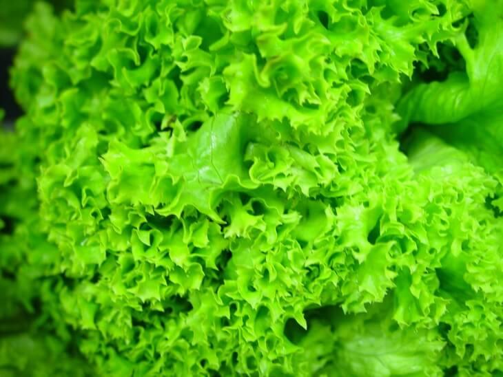 Многоярусный лук сортов Память и Ликова за 20 дней даст много зелёной массы