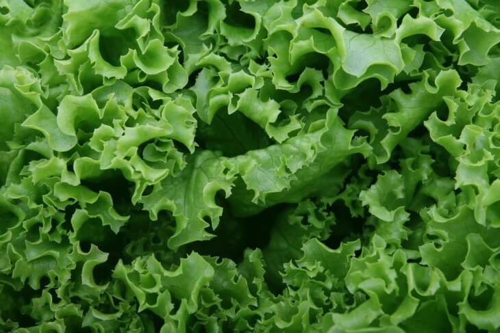 Одна из разновидностей салата