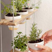 Пряные травы в детской комнате - отличное решение