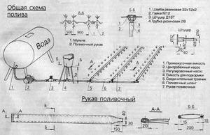 Схема капельного полива - как правильно организовать полив.