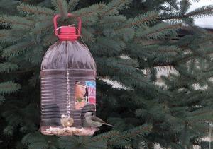 Описание способа изготовления скворечника из пластиковых бутылок