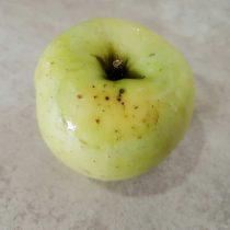 Фузариозная гниль яблока