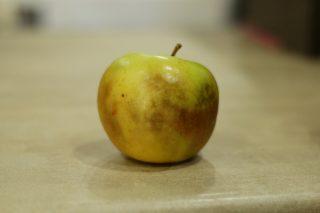 Мокрый ожог яблока